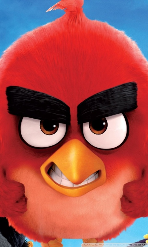 Download Angry Birds Hd Wallpapers For Mobile Gallery