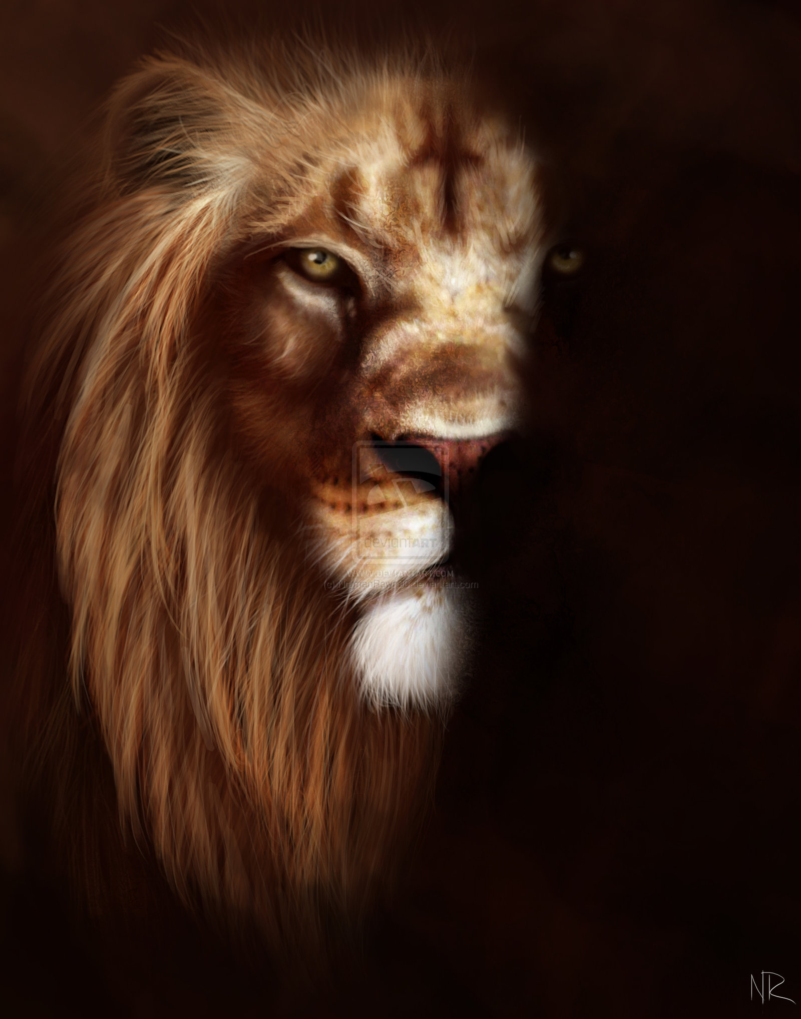 Angry Lions Face images