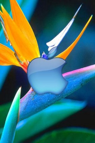 Animated Live HD Wallpapers For Iphone 4