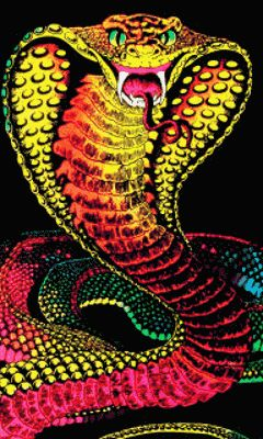 Download Animated Snake Wallpaper Gallery