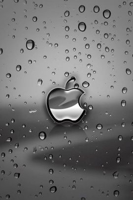 Apple Phone HD Wallpaper