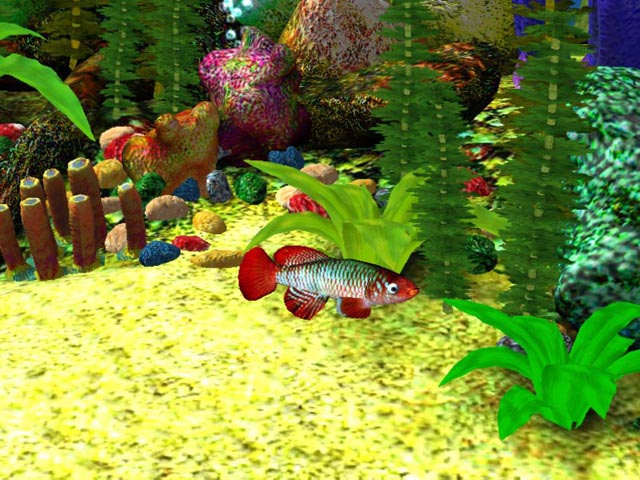 Aquarium Wallpaper 3D Free Download
