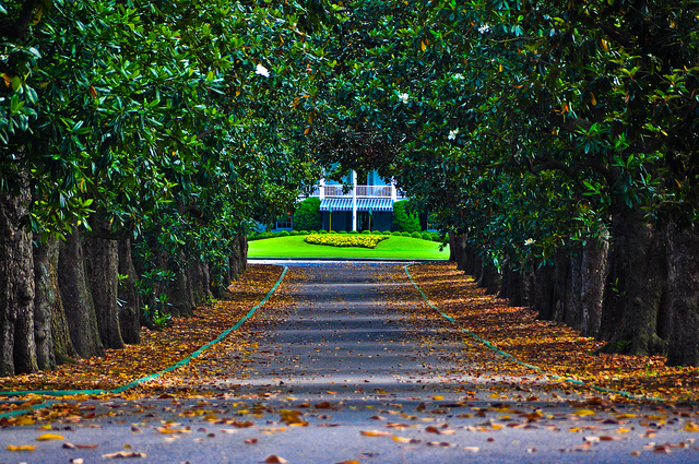 download augusta national background wallpaper gallery