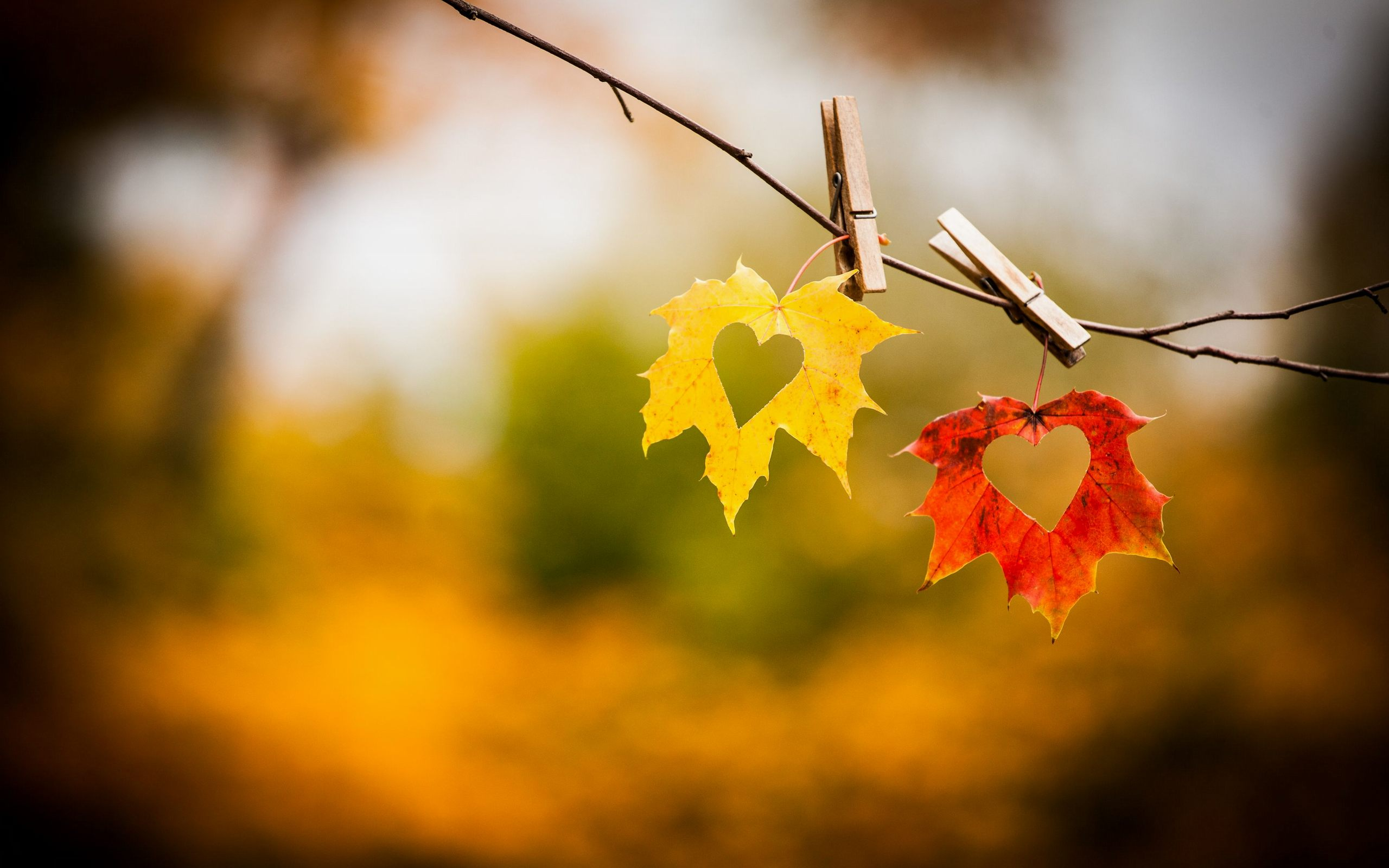Autumn Love Wallpaper