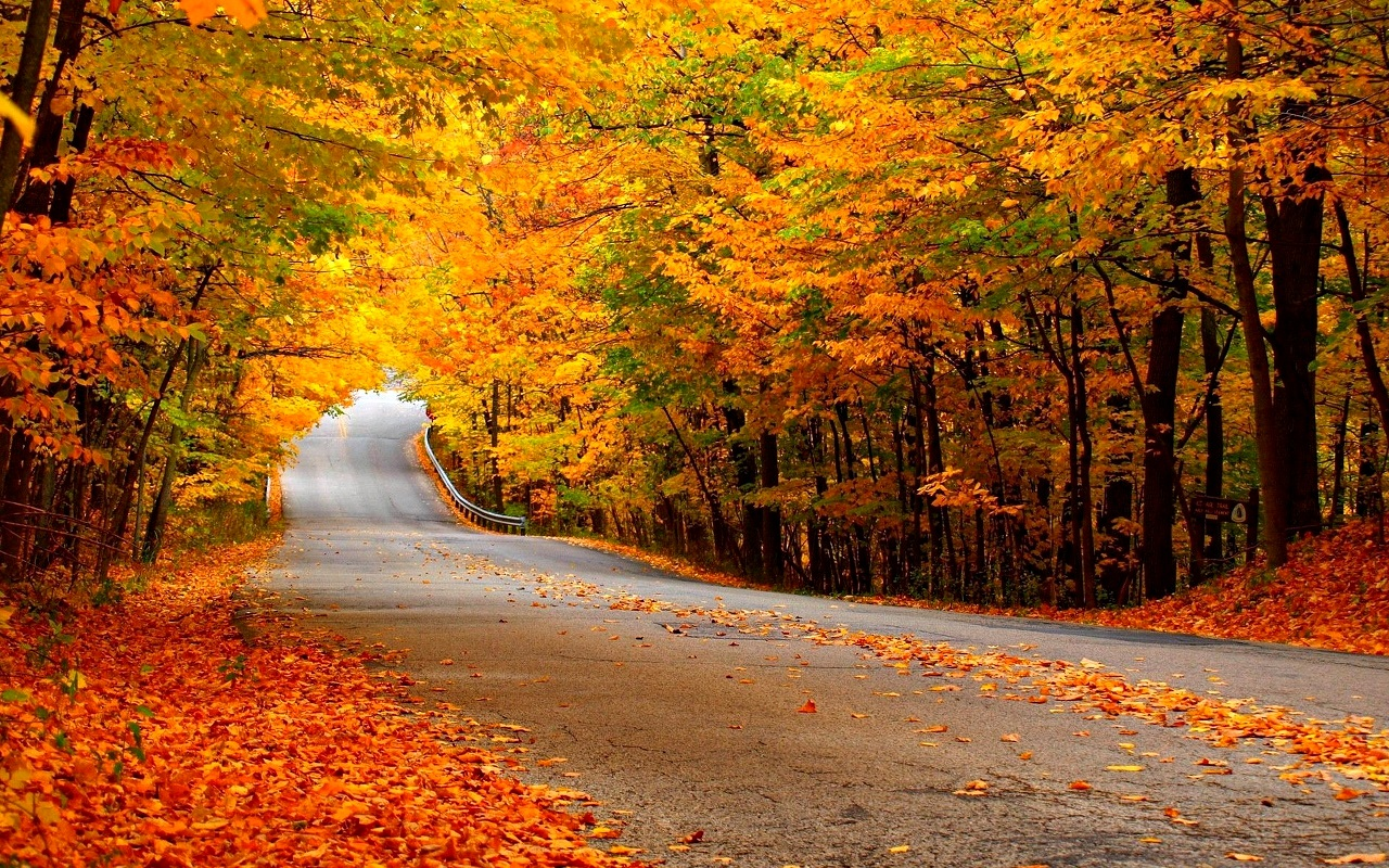 Autumn Pics Wallpaper