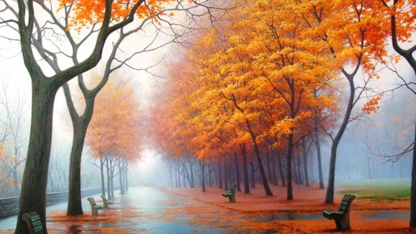 Autumn Pictures Wallpaper