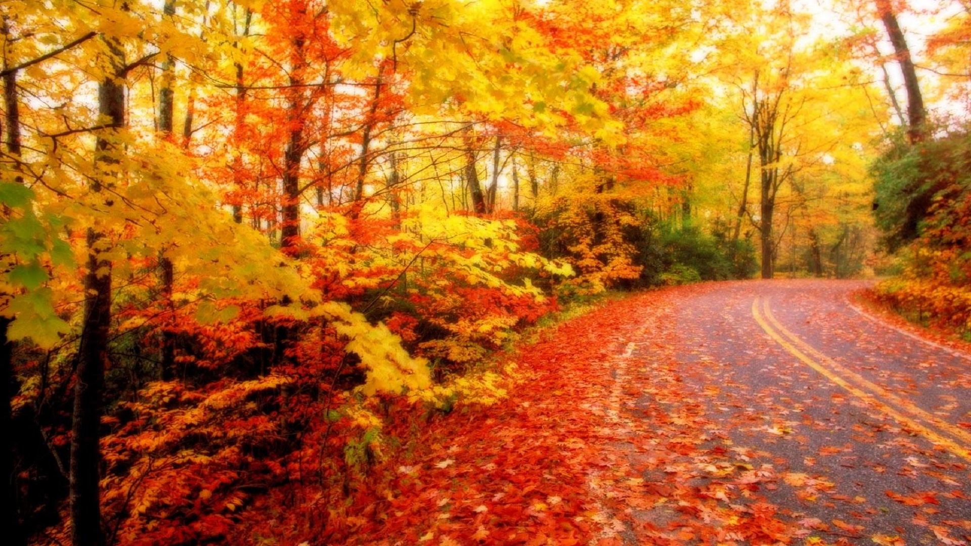Autumn Season Pictures Wallpaper