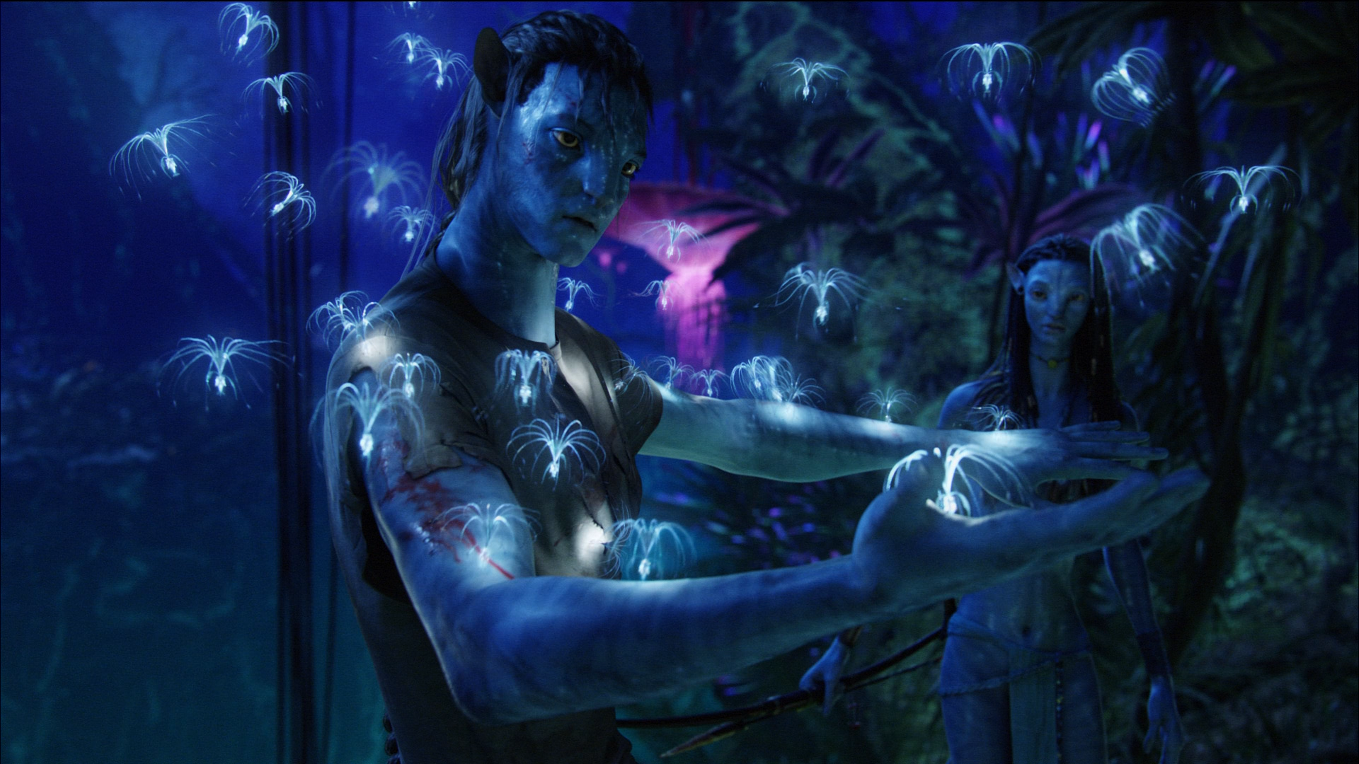 Avatar HD Wallpaper Free Download
