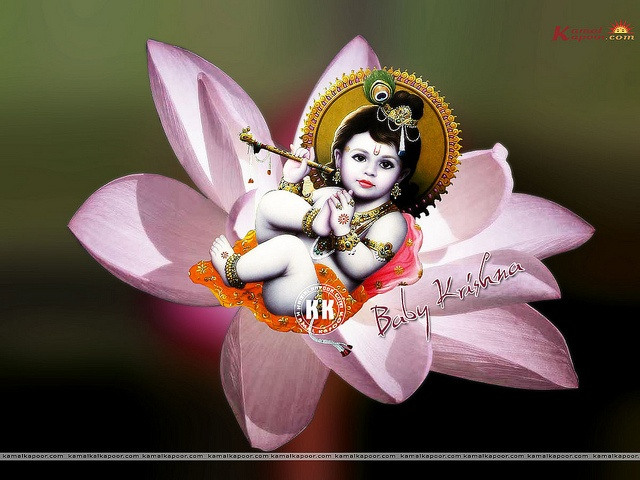 Baby Lord Krishna Wallpapers Free Download