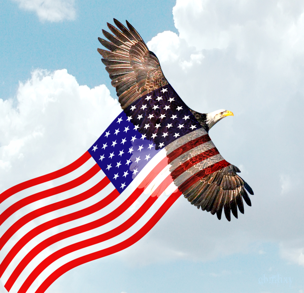 Download Bald Eagle American Flag Wallpaper Gallery