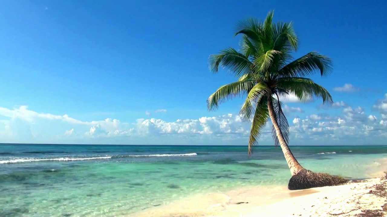 Beach Live Wallpaper HD