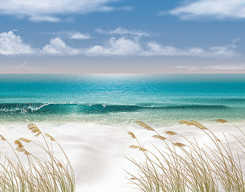 Download Beach Themed Wallpaper Border Gallery
