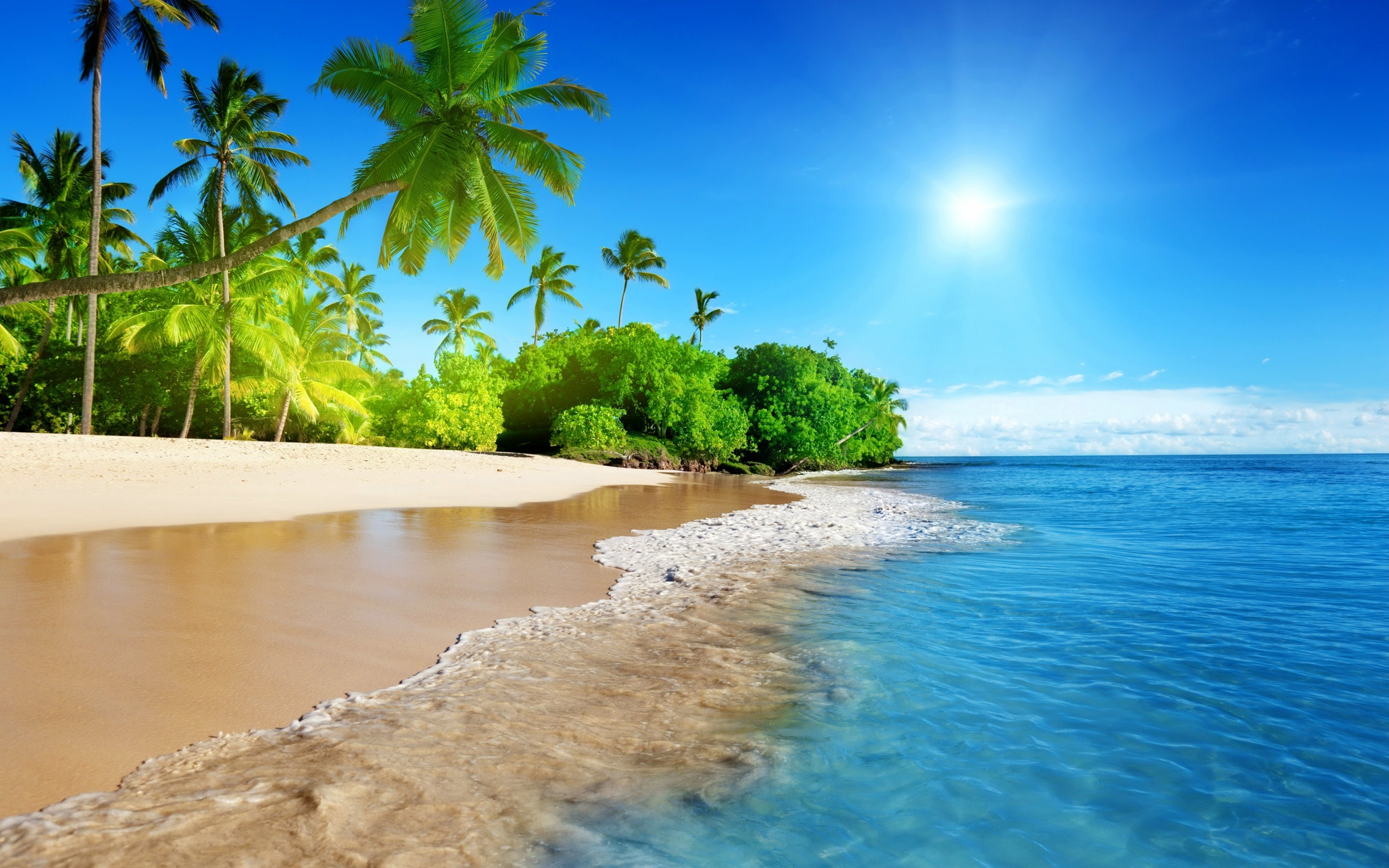 Beach Vacation Wallpaper