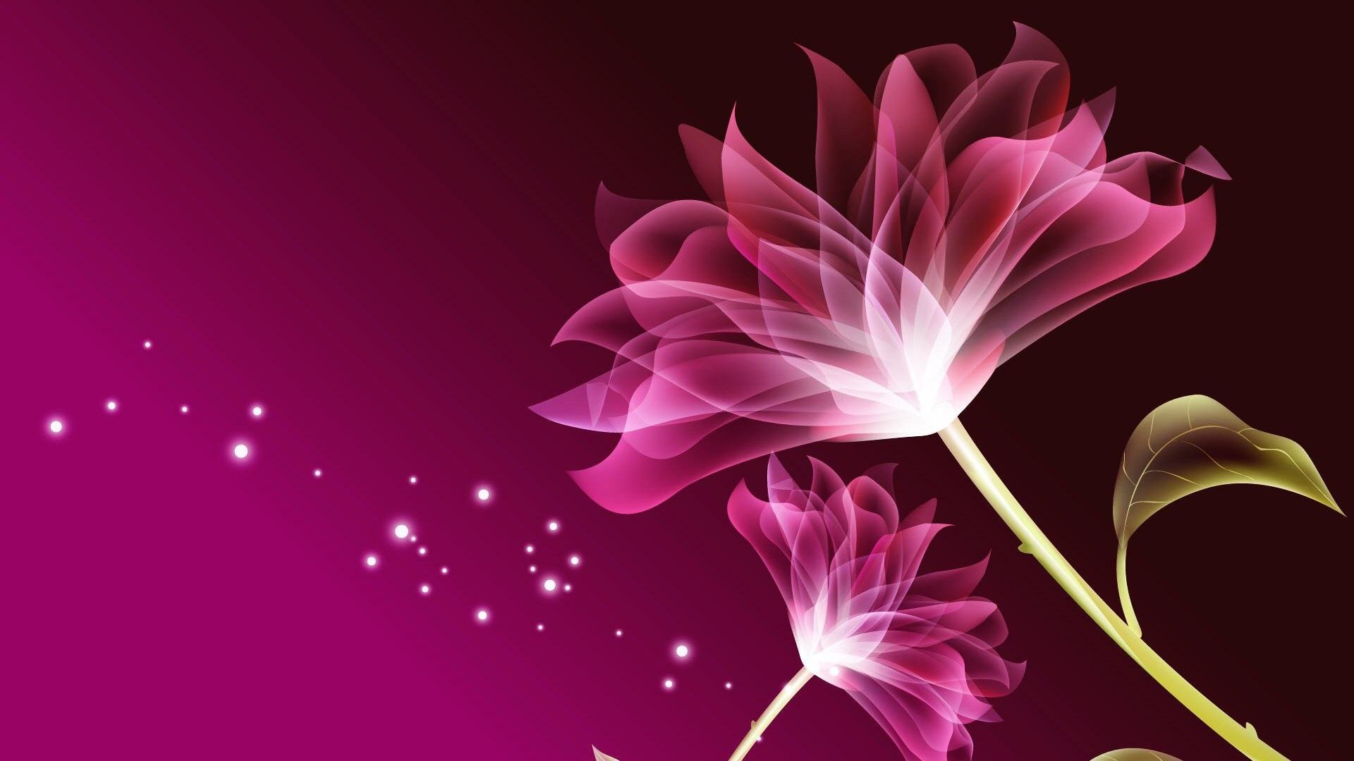 Beautiful Flower Nature Wallpapers