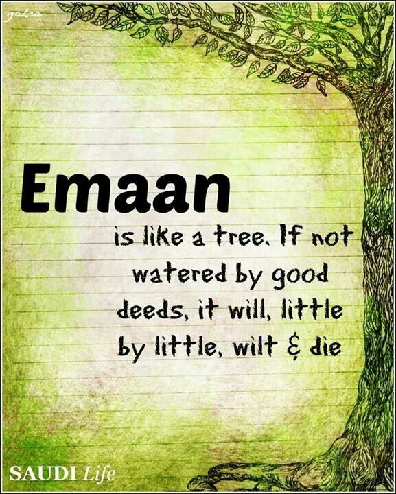 Muslimah Quotes Wallpaper: Download Beautiful Islamic Quotes Wallpapers Gallery