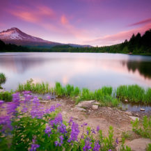 Beautiful Nature Wallpaper Widescreen