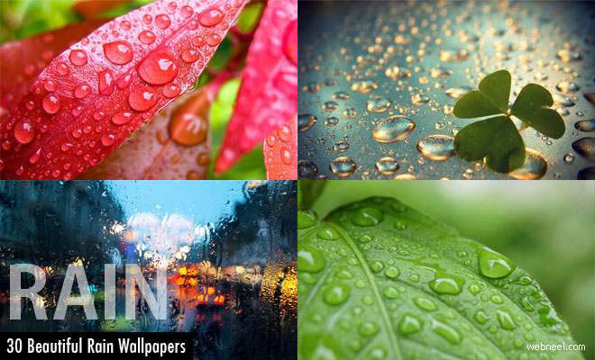 Beautiful Pictures For Wallpaper