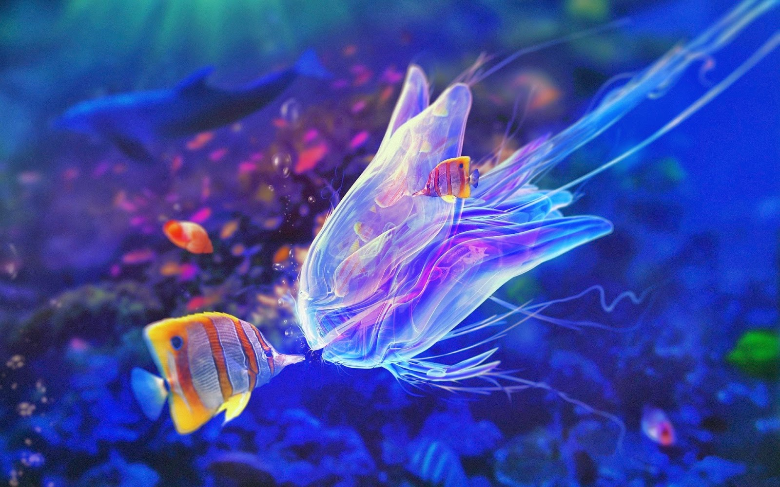 Beautiful Sea Fish Wallpapers