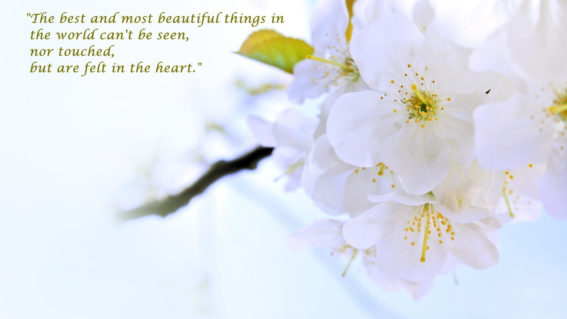 Beautiful Things Wallpapers