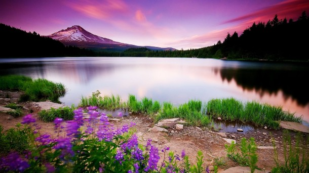 Beautiful Wallpapers Pictures