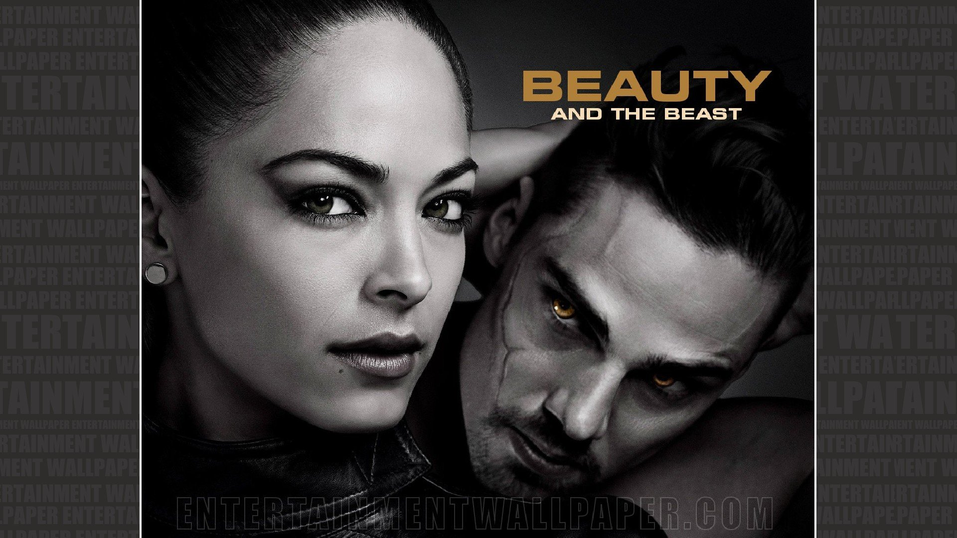 Beauty And The Beast Tv Show Wallpaper