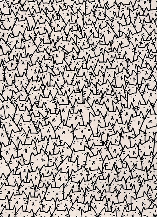 Because Cats Wallpaper