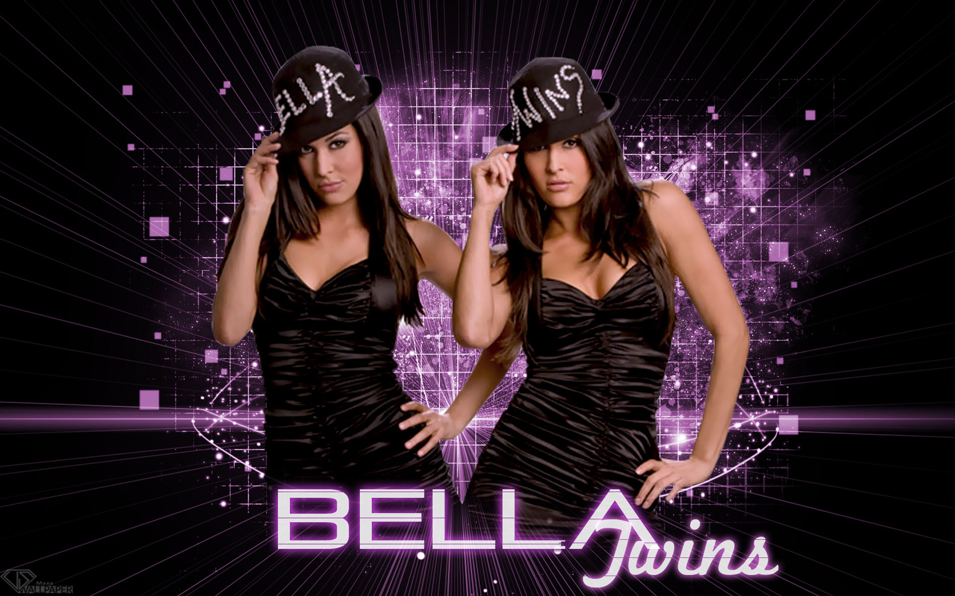 Bella Twins Wallpaper Download