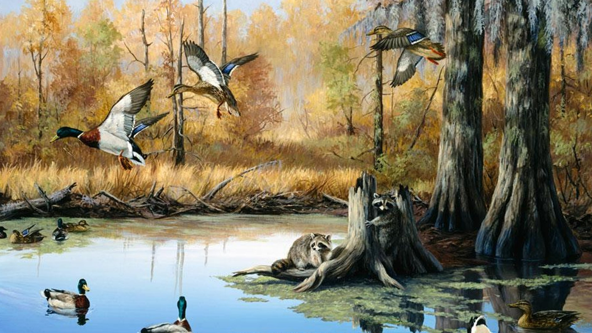 Best Hunting Wallpapers