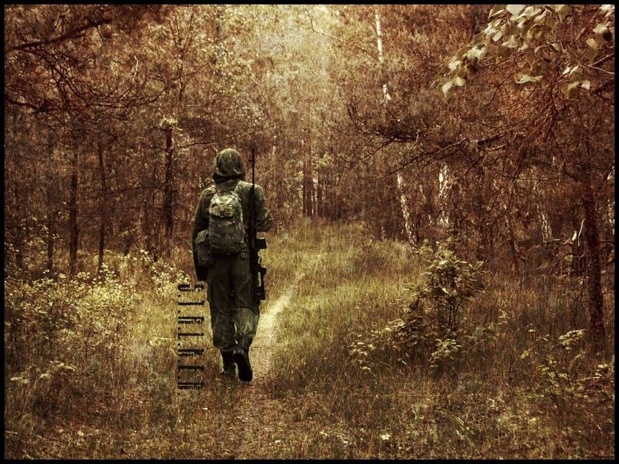 Download Best Hunting Wallpapers Gallery