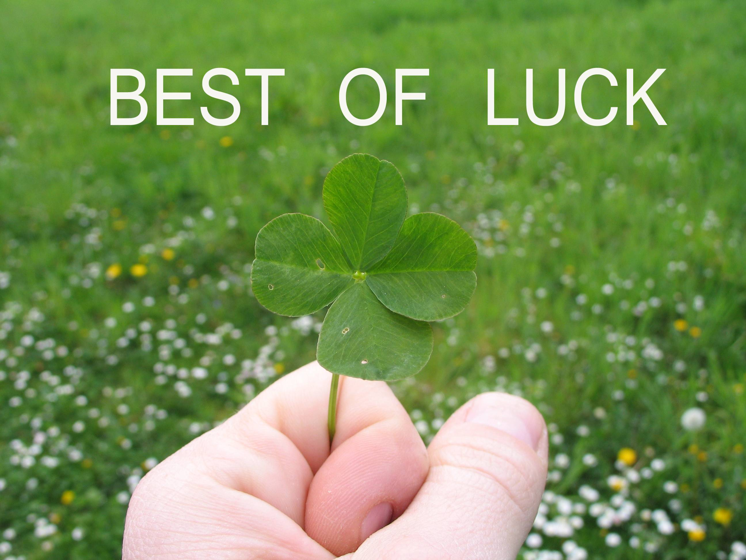 Best Of Luck Wallpaper