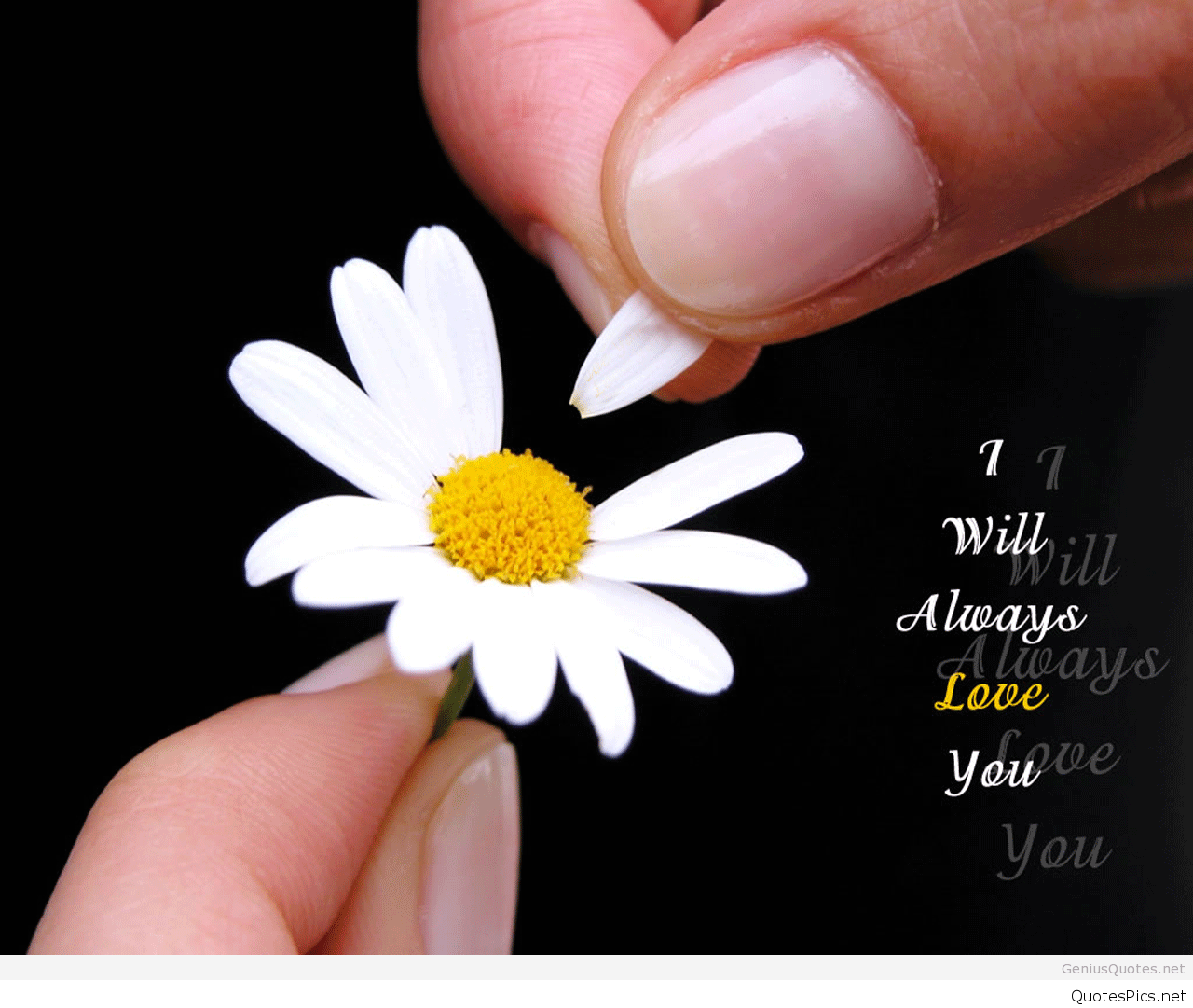 Best Sad Love Quotes Wallpapers