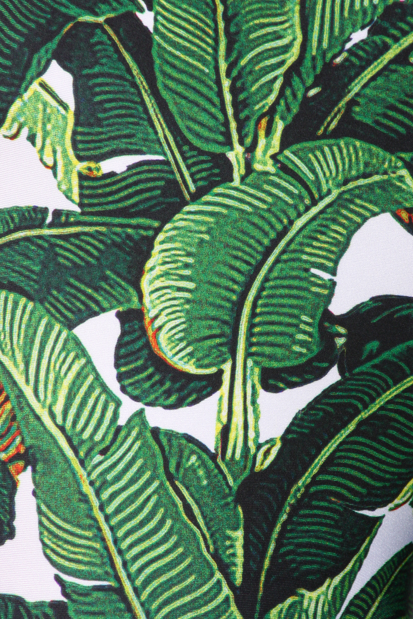download beverly hills banana leaf wallpaper gallery