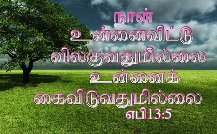 Download Bible Verse Of The Day In Tamil Wallpaper Gallery
