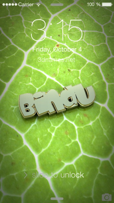 Bindu Name Wallpaper