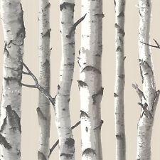 Birch Wallpaper