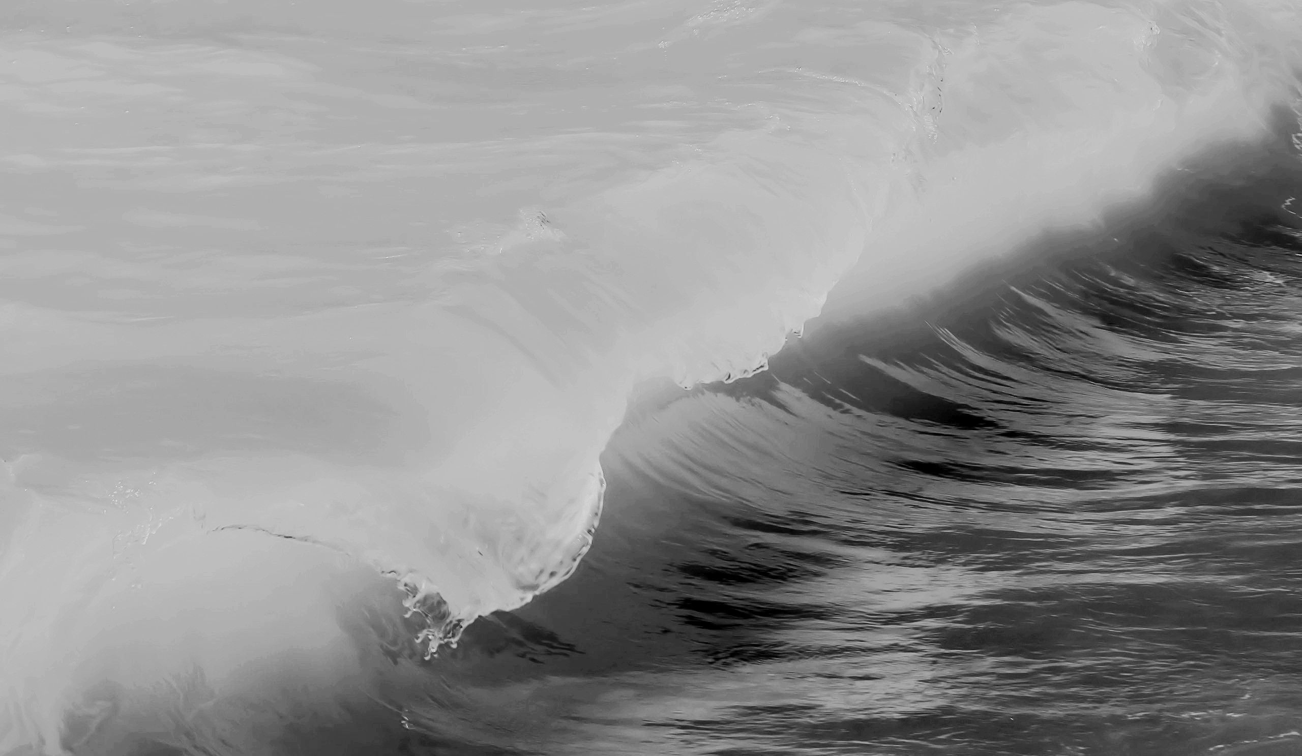 Balck And White Wallpaper: Download Black And White Ocean Wallpaper Gallery