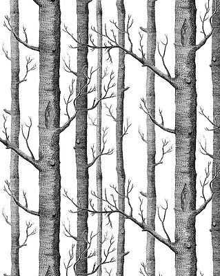 Black And White Tree Wallpaper Once Upon A Time
