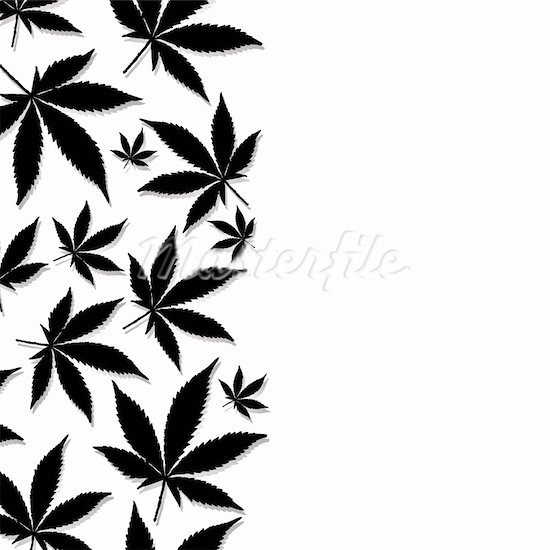 Black And White Weed Wallpaper