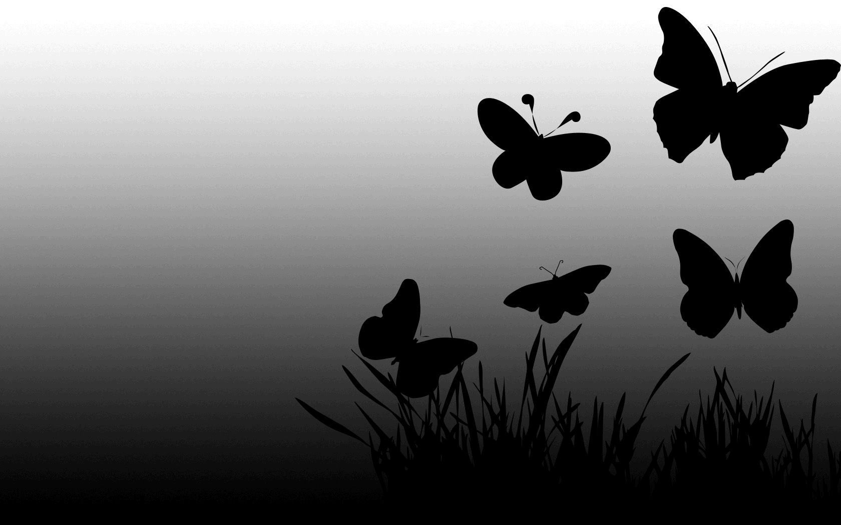 Black Butterfly Wallpaper