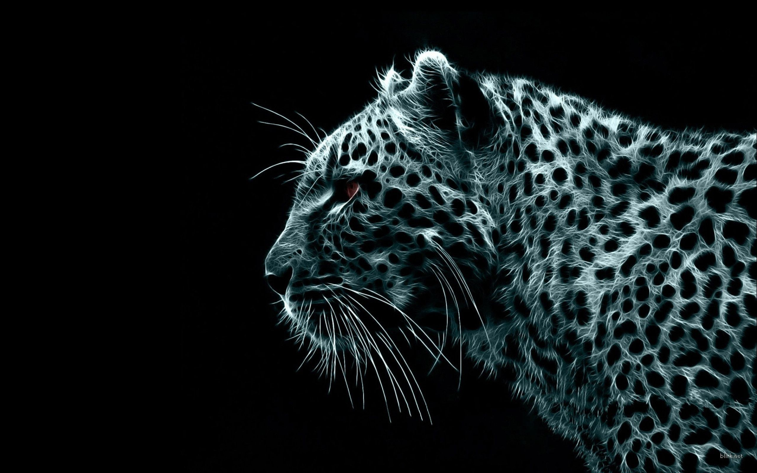 Black Leopard Wallpaper HD