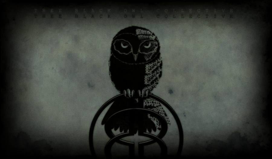 Black Owl Wallpaper