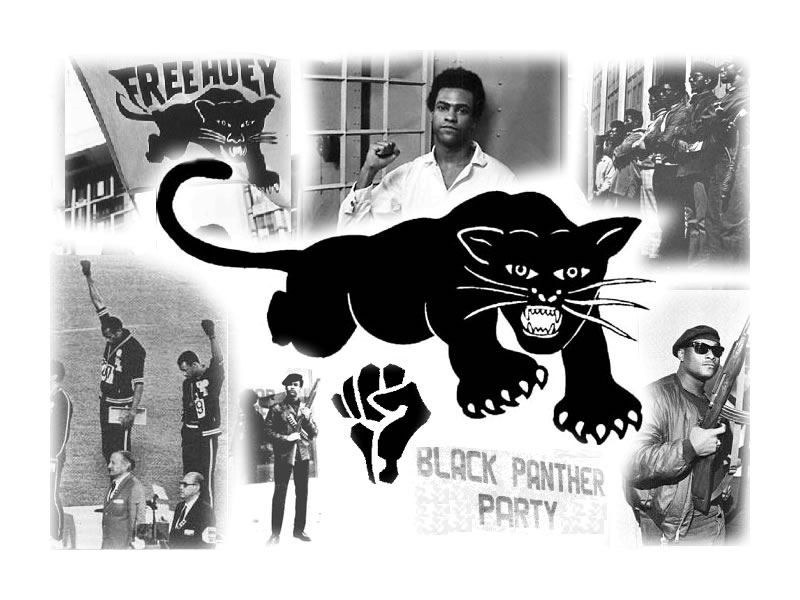 Download Black Panther Party Wallpaper Gallery