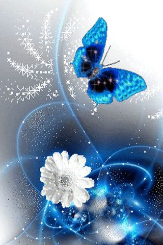 Blue Butterfly Live Wallpaper