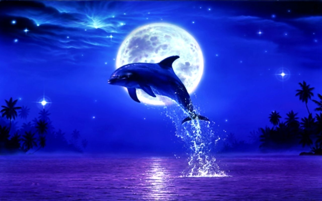Blue Dolphin Wallpaper