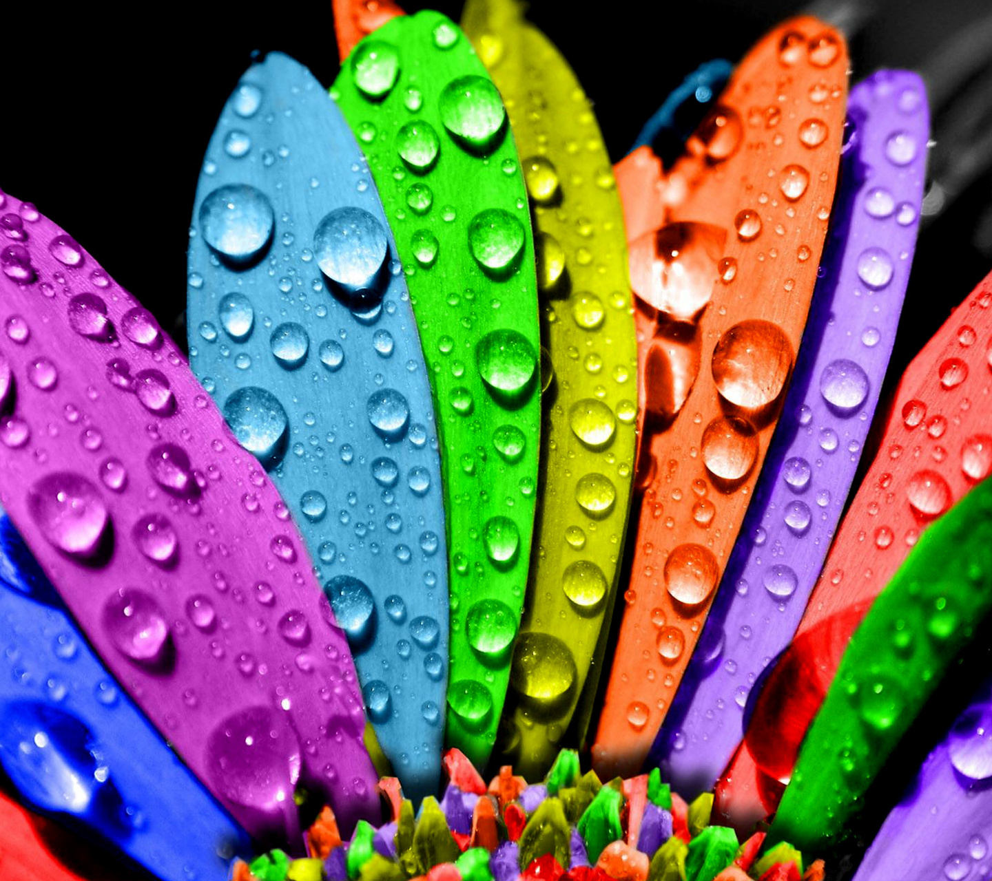 Bright Colorful Wallpapers