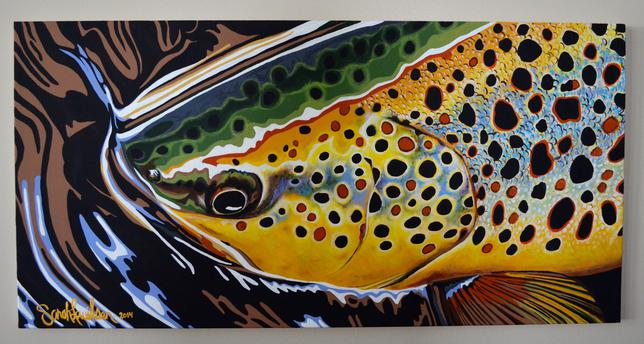 Download Brown Trout Wallpaper Gallery