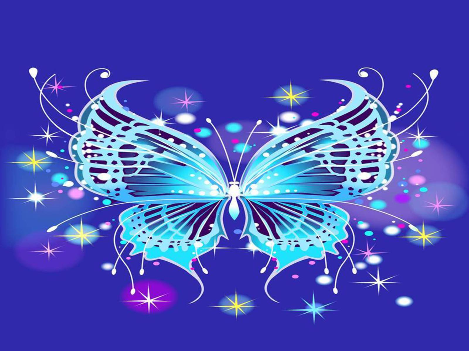 Butterfly Pictures Wallpaper
