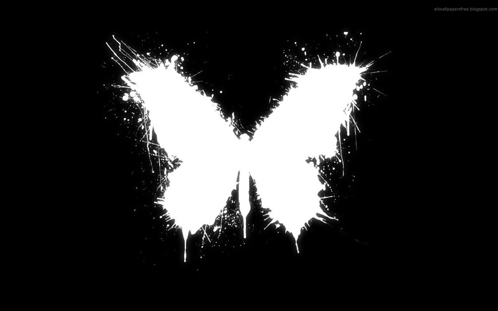 Butterfly Wallpaper Black Background