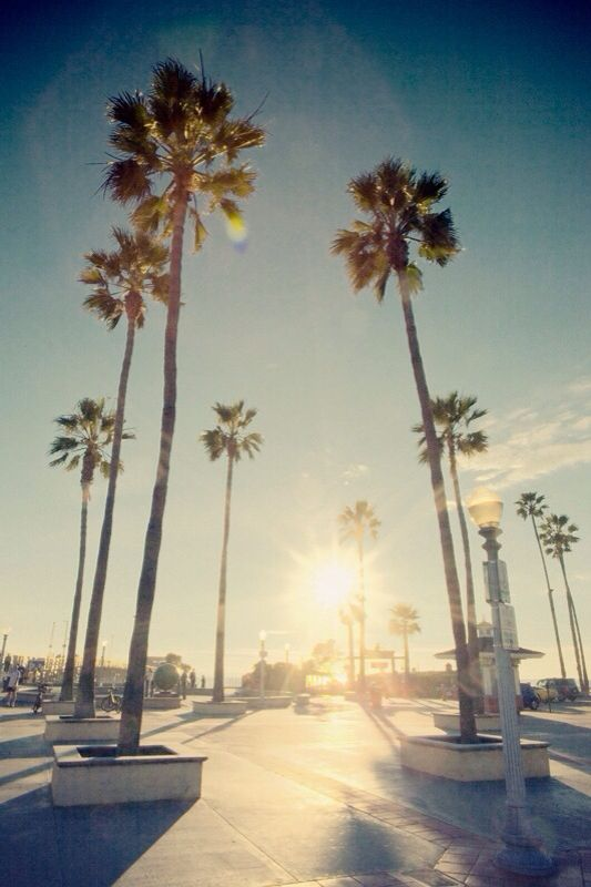 California Iphone Wallpaper