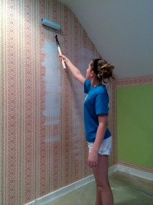 Download Can You Paint Over Wallpaper Gallery
